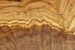 Holzstruktur Olivenholz